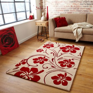 visually pleasing rug & furniture