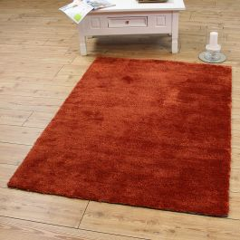 Tula Rug Rust Colour