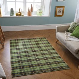 Thin Cottage Green Rug 11G