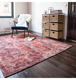Hadschlu Antique Rug 8719 782 Red Brick