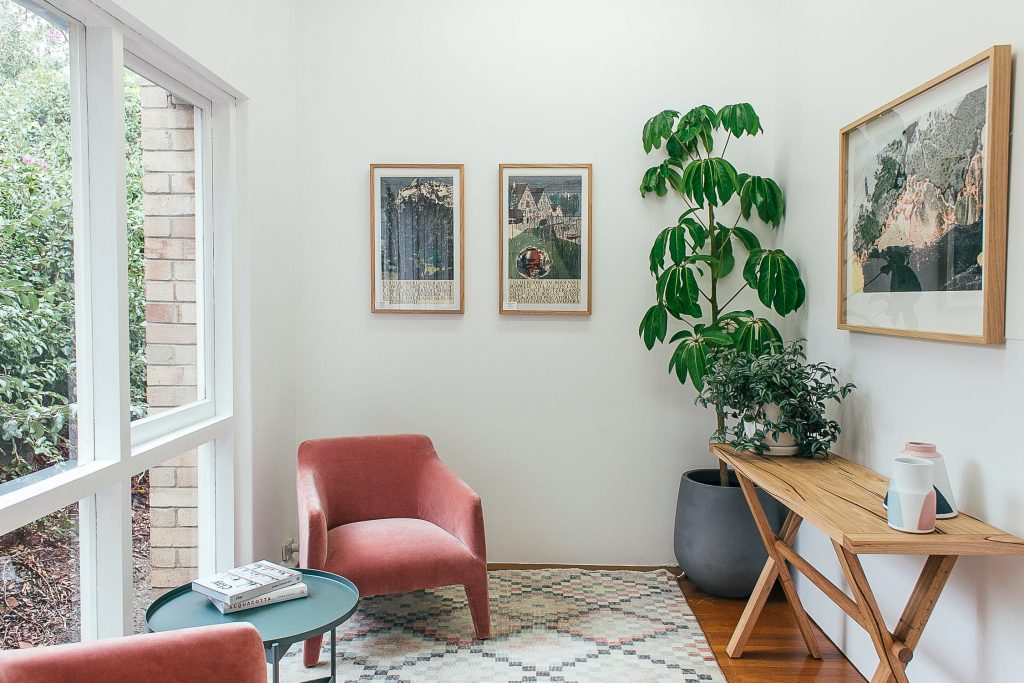 home office with lovely rug and houseplant